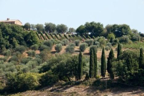 In dieci punti la richiesta di autonomia differenziata della Toscana