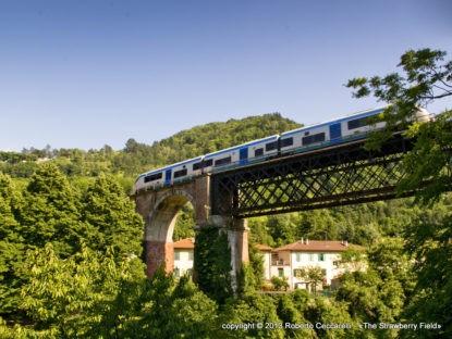 Lavori al ponte sul Rio del salto sulla faentina dal 6 al 9 agosto