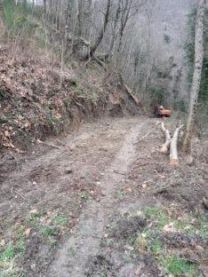 Strada nel bosco a Londa non autorizzata